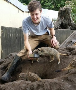 A close encounter with a mob of hungry meerkats!